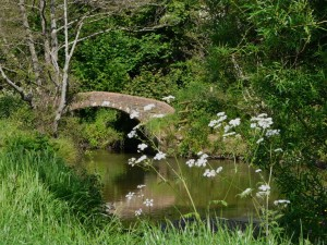 "alt=""A bridge over the Asker in Springtime"""
