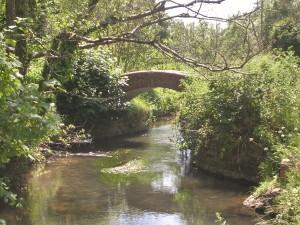 "alt=""Monarch's Way Bridge Happy Island"""