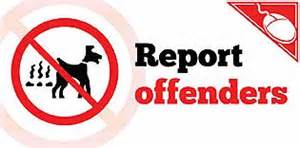Report offenders