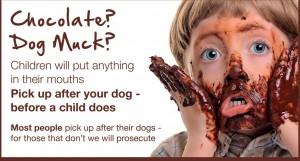"""alt= """"a dog fouling poster"""""""
