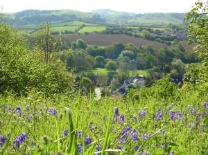 """alt=""""view across the rural civil parish of Bradpole"""""""