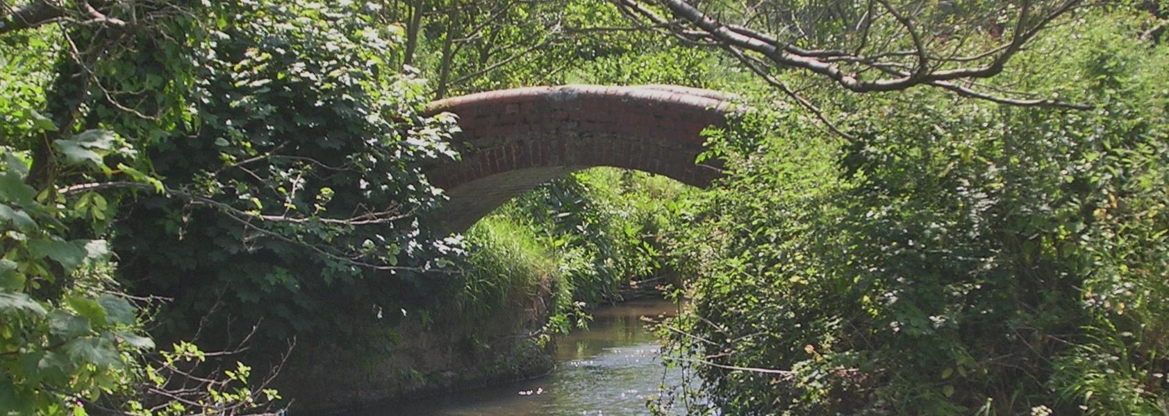 River Asker