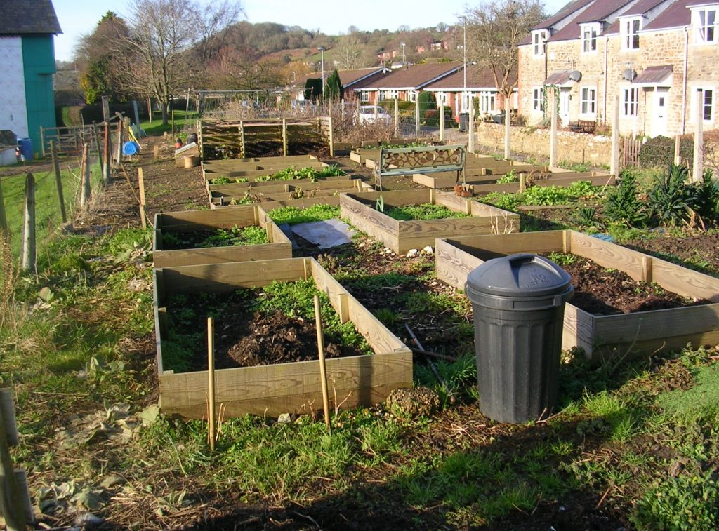 "alt="" bradpole's allotments"""